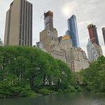 Central Park - bridge an lake