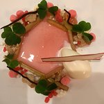 Desert: Rhubarb and wood-sorrel