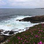 Illa Pancha Φωτογραφία