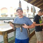 Foto de Gator Golf And Adventure Park