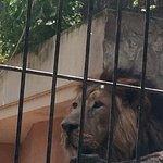 Zoobotanico Jerez Photo