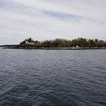Foto de Cap'n Fish's Whale Watch