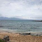 Photo of Kapalua Beach