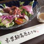 Kisokoma Kogen Hotel Φωτογραφία