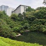 5月撮影:八芳園内の池