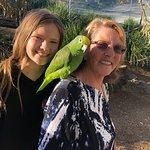 Maleny Botanic Gardens & Bird World Φωτογραφία