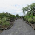 Foto de Kaloko-Honokohau National Historical Park