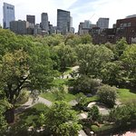 View of Boston's Public Garden from our room # 708