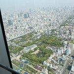 ภาพถ่ายของ Harukas 300 Observation Deck