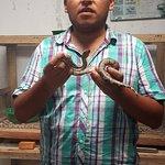 foto con las serpientes pequeñas 2014