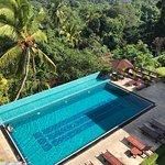Swimming pool overlooking lush greenery