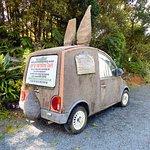 Amusing Top O The Dome Cafe car 3