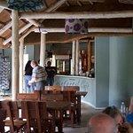 The Rainforest Cafe의 사진