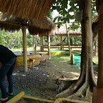 Bilde fra Bali Mini Golf