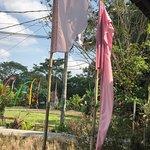 Mesari Warung照片