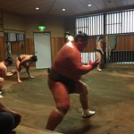 Sumos training in a sumo stable nearby