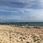 Вот так убирали пляж от водорослей - так и не убрали в итоге)
