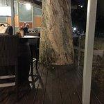 The Surf Club Palm Coveの写真