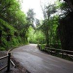 Entrada desde Ribadesella