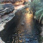 Foto di Kings Canyon