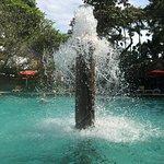 صورة فوتوغرافية لـ حديقة وتربوم بالي
