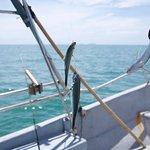 Soon Coastal Fishing照片