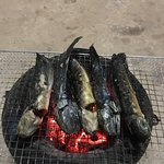Cambodian traditional food ( Grill cat fish )