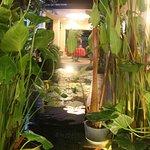 Enternal garden