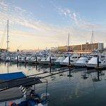 Cabo Adventures - Luxury Sailing Adventure Resmi