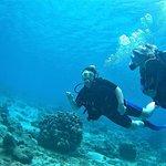 Bilde fra Rebel Diving Curacao