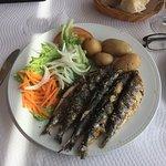 Fresh Sardines in Sitio