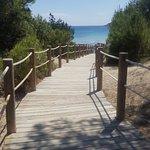 Playa de Ses Salines Foto