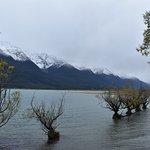Out around Glenorchy, famous spot for pictures.