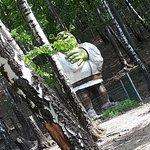 Photo of Lesny Park Niespodzianek