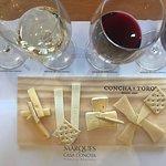 Degustação com vinhos harmonizados com queijos