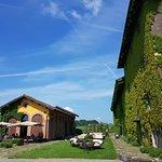 Фотография Ristorante La Gallina - Villa Sparina Resort