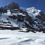 Columbia Ice Field Foto