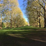 Photo of Green Park
