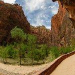 Zion National Park (Riverside Walk)