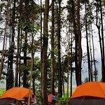 Star Camp (penginapan tenda) Di Tretes Treetop.