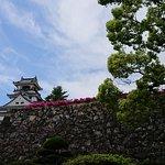 Photo of Kochi Castle