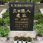 Lantian Yuanren Site Memorial Museum Photo
