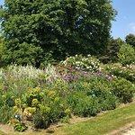 Photo de Parc floral de Paris