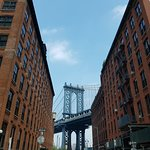 Photo of Dumbo