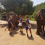 Photo of Chiangmai Mountain Sanctuary