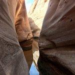Bilde fra Earth Tours Southern Utah