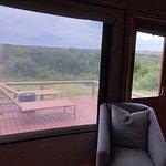 Hlosi Game Lodge - Amakhala Game Reserve Φωτογραφία