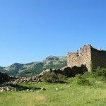 Ruines du Fort de Reallon
