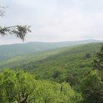 Hawk Mountain Sanctuary의 사진