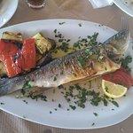Kosmos Fish Tavern Image